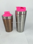 Stainless Steel Insulated Shaker Bottle