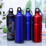 Custom printing 750ml 1000ml aluminium water sport bottle