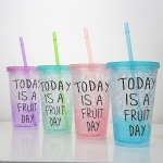 Insulated Innovative Printed 450ML / 650ML Double Wall Ice Straw Cup